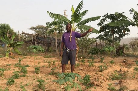 GOING GREEN: Ibrahim Salifu says the world doesn't need chemical fertilizer
