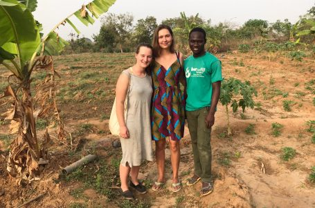 Staying in Ghana: Dutch students document 'the greenhouse' experience in Karimenga